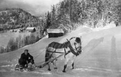 Einar Omland på tømmersleden - #KvH 06-071 b