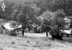 Dalen nistogo oml 1950 - #KvH 04-041 b
