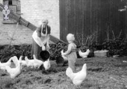 Anne Husås stullar hønene - #KvH 06-022 b