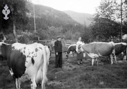 Anne og Halvor Husås med buskapen - #KvH 06-023 b