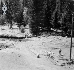 Flaum 1953 nr 10 Haukomgrend - #KvH 02-089 b