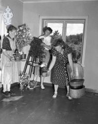 Flaum 1953 nr 11 Haukomgrend - #KvH 02-090 b