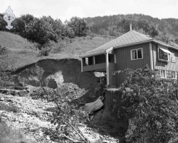 Flaum 1953 nr 12 Haukomgrend - #KvH 02-091 b